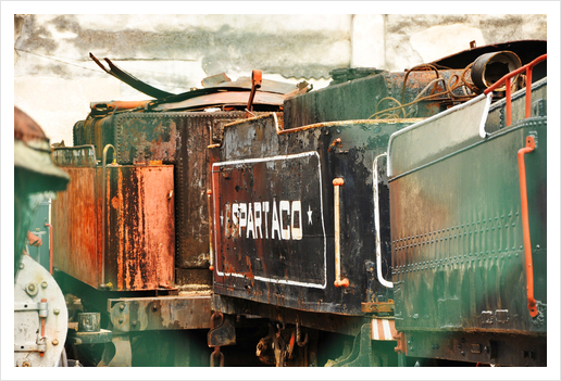 Train Cemetery Art Print by fauremypics