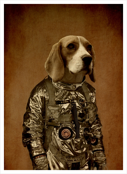 Beagle Art Print by durro art