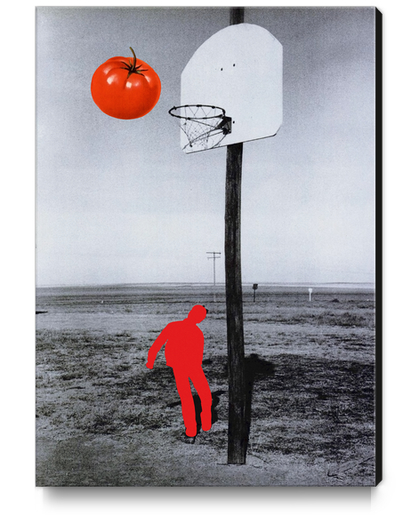 Tomato Canvas Print by Lerson
