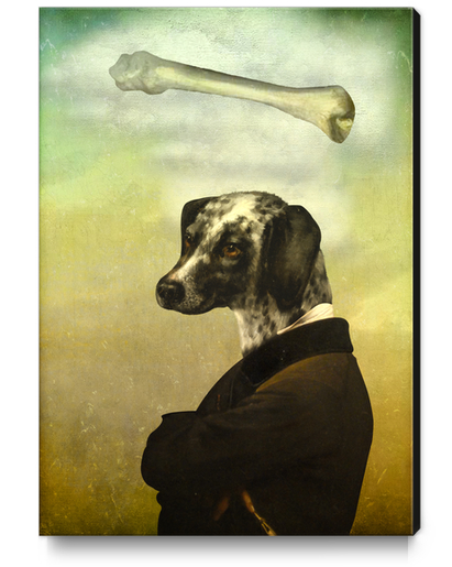 A Dog's Dream Canvas Print by DVerissimo