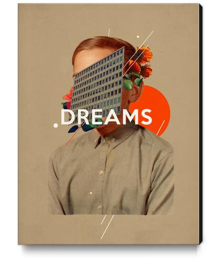 Dreams Canvas Print by Frank Moth