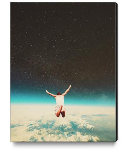 Falling With A Hidden Smile Canvas Print by Frank Moth