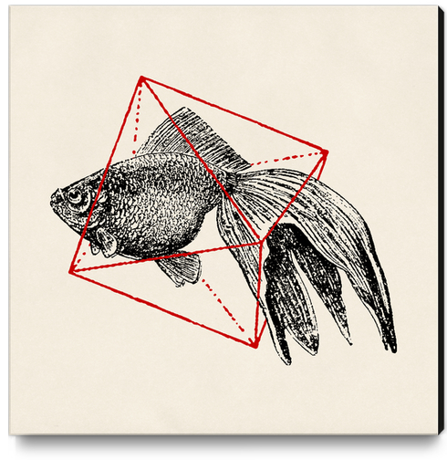 Fish In Geometrics III Canvas Print by Florent Bodart - Speakerine