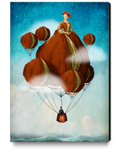 Flying Away Canvas Print by DVerissimo