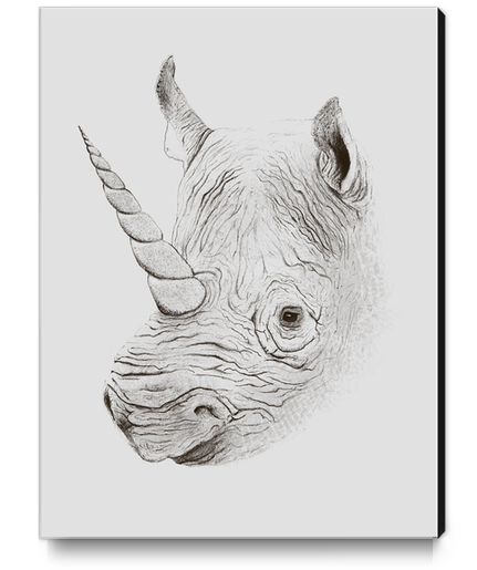 Rhinoplasty Canvas Print by Florent Bodart - Speakerine