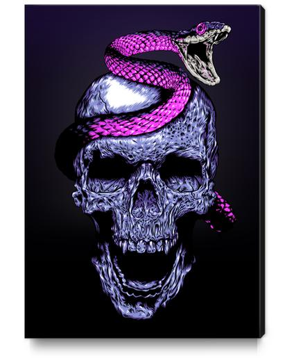 Skull and Snake Canvas Print by Jordygraph