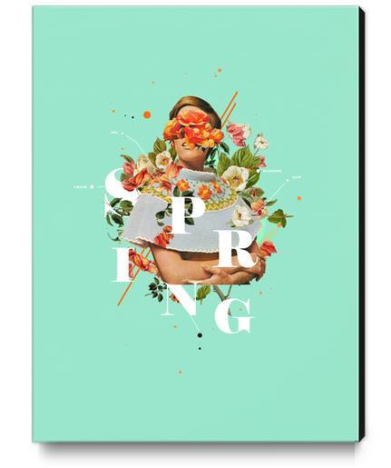 Spring Canvas Print by Frank Moth
