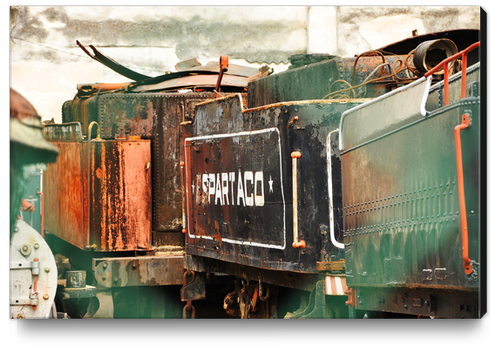 Train Cemetery Canvas Print by fauremypics