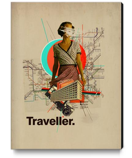 Traveller Canvas Print by Frank Moth