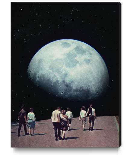 Way Back Home Canvas Print by Frank Moth