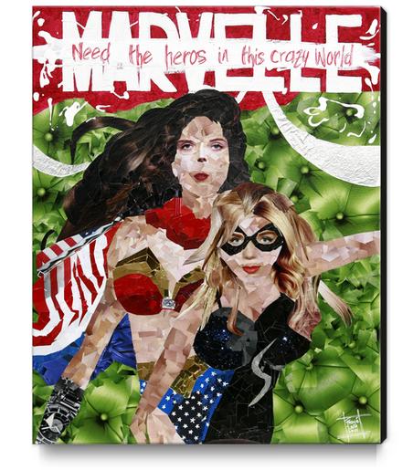 need the heros in this crazy world Canvas Print by frayartgrafik