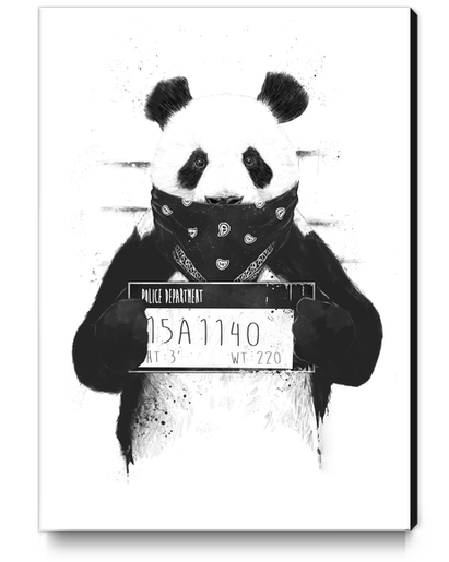 Bad panda Canvas Print by Balazs Solti