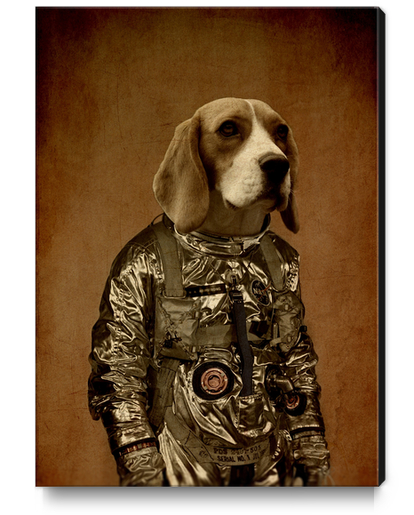 Beagle Canvas Print by durro art