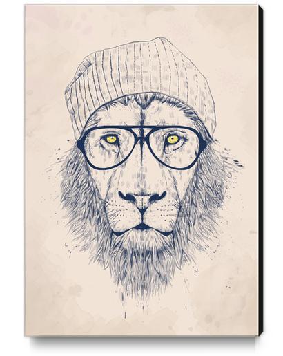 Cool lion Canvas Print by Balazs Solti