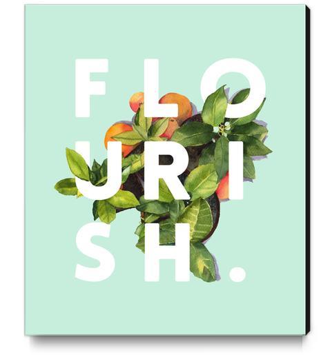 Flourish Canvas Print by Uma Gokhale