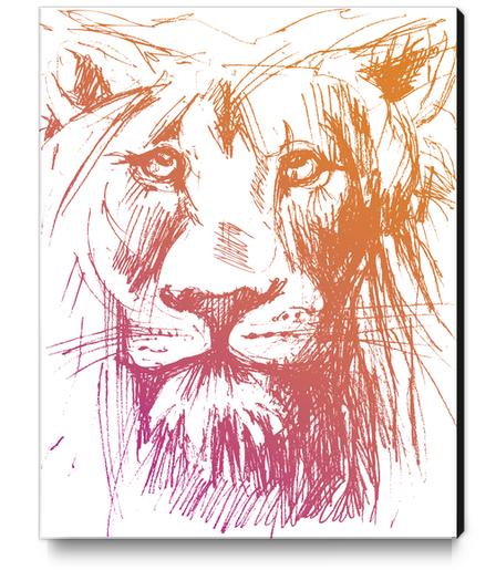 Lion Canvas Print by Georgio Fabrello