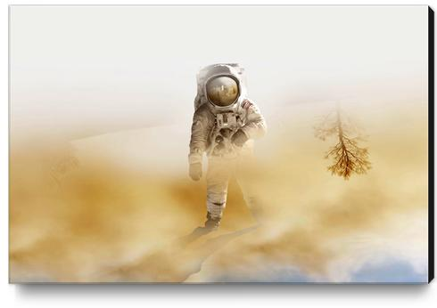 Playing Mars on the desert Canvas Print by fokafoka
