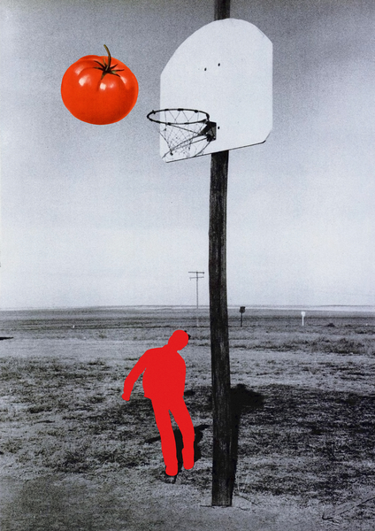 Tomato by Lerson