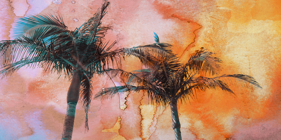 Palm Trees 2 by Irena Orlov