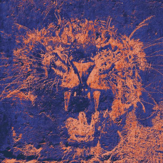 Bichro-Tiger by Malixx