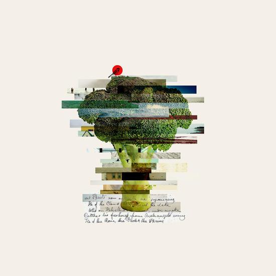 Broccoli by Oleg Borodin