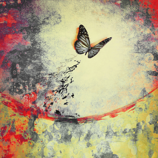 Butterfly I by DejaReve