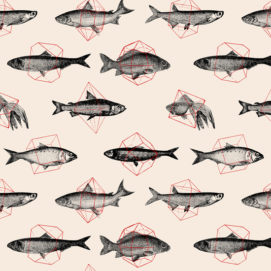 Fishes In Geometrics by Florent Bodart - Speakerine