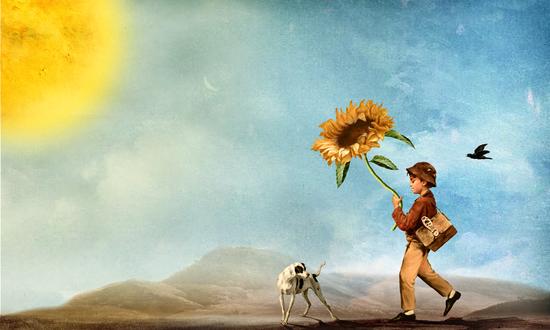 Follow the Sun by DVerissimo