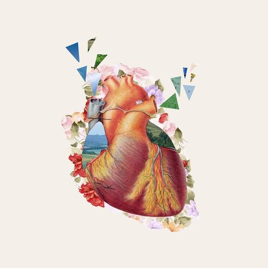 Heart by Oleg Borodin