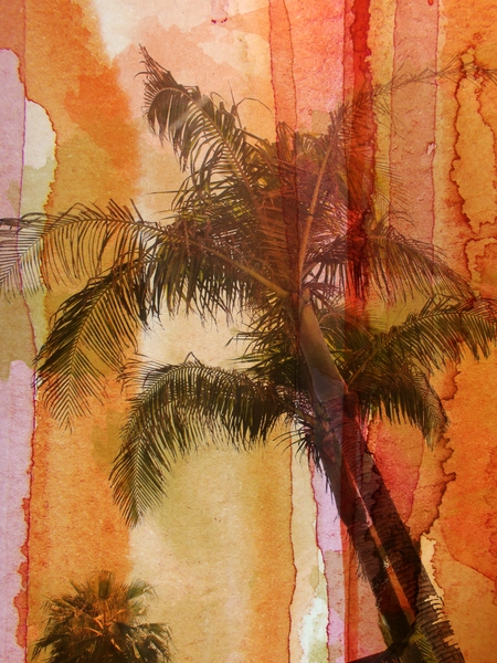 Palm Tree by Irena Orlov