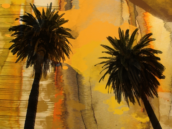 Palm Duo by Irena Orlov