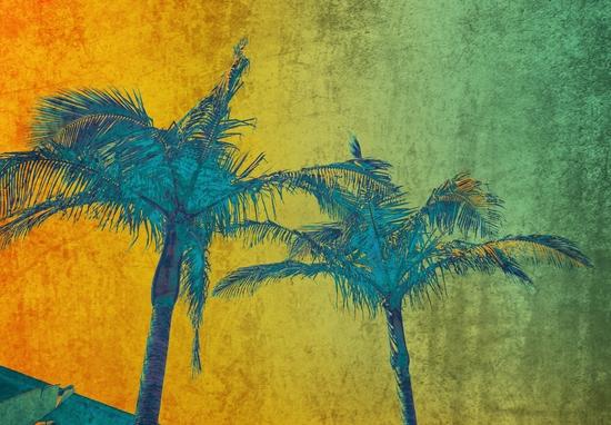 Palm Duet by Irena Orlov