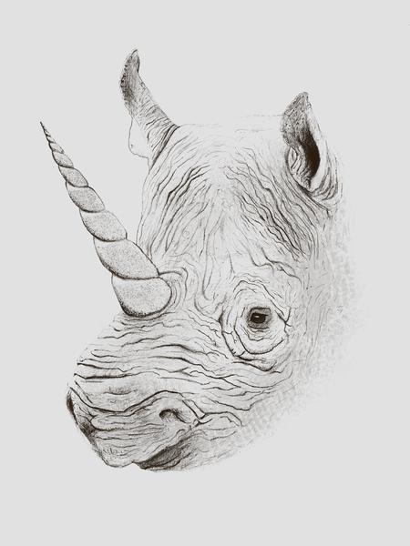 Rhinoplasty by Florent Bodart - Speakerine