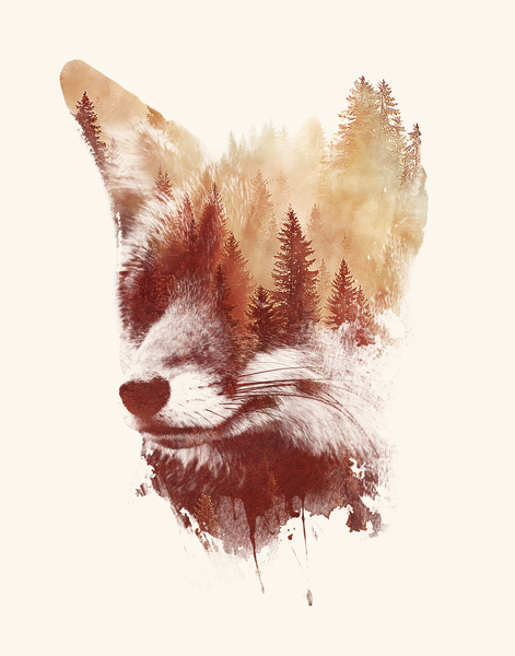 Blind Fox by Robert Farkas