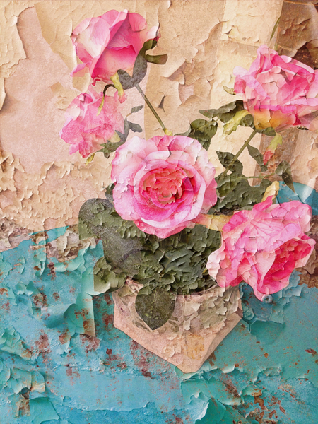 Roses de Lourmarin by Ivailo K