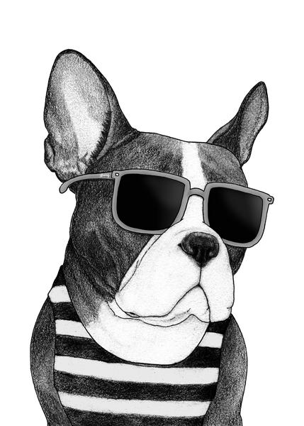 Frenchie Summer Style bw by Barruf