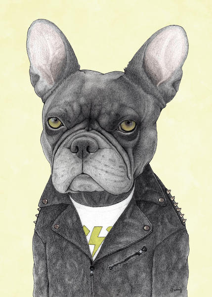 Hard Rock French Bulldog by Barruf