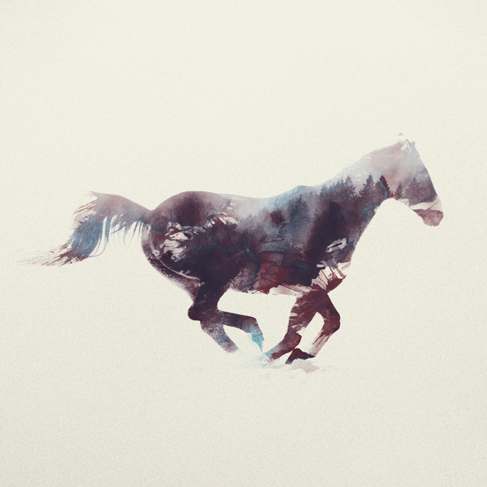 Horse by Andreas Lie