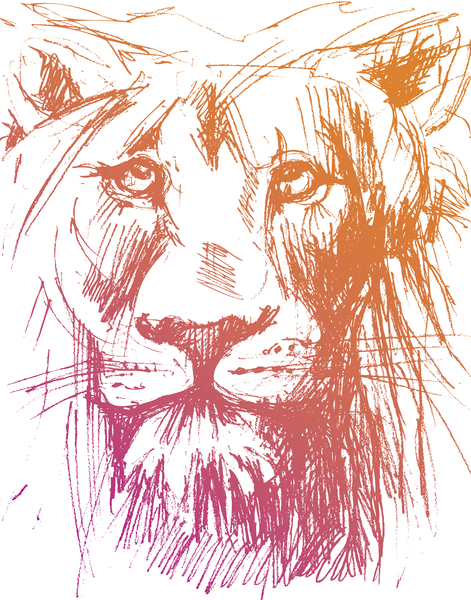 Lion by Georgio Fabrello