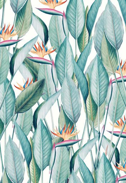 Back to Paradise Island by Uma Gokhale