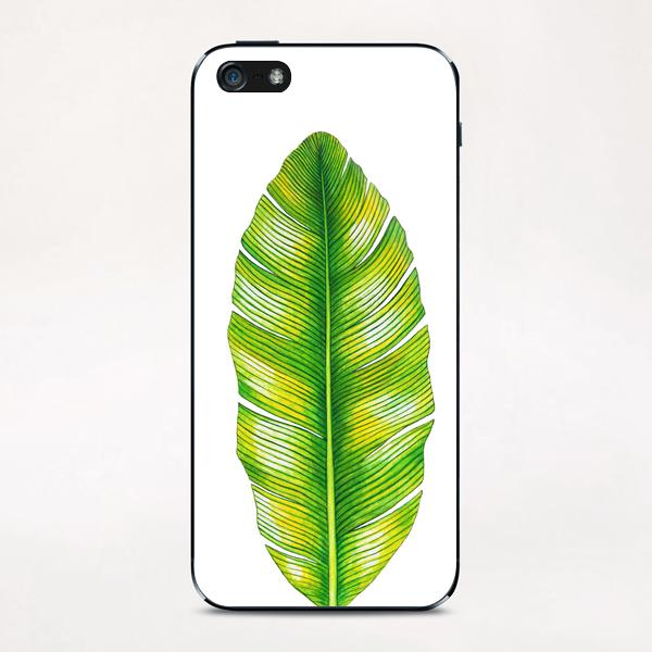 Banana Leaf iPhone & iPod Skin by Nika_Akin