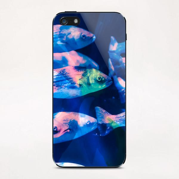 Colorful fish iPhone & iPod Skin by mmartabc
