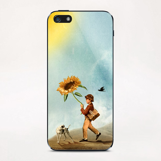Follow the Sun iPhone & iPod Skin by DVerissimo