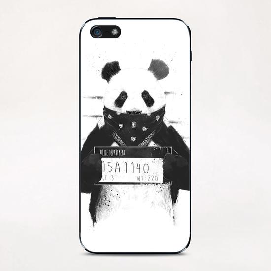 Bad panda iPhone & iPod Skin by Balazs Solti