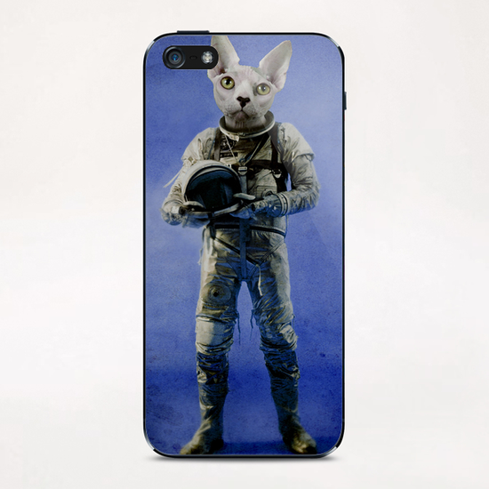 look into the distance iPhone & iPod Skin by durro art