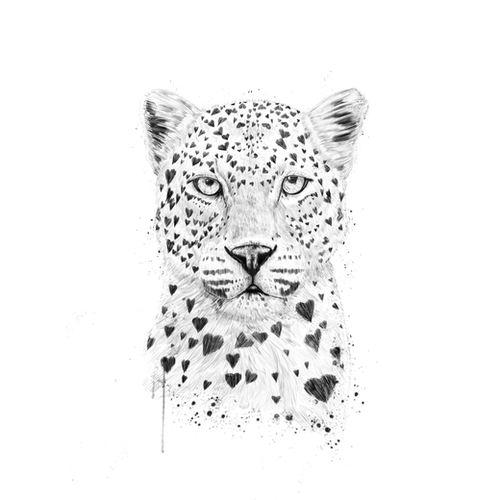Lovely leopard Mural by Balazs Solti