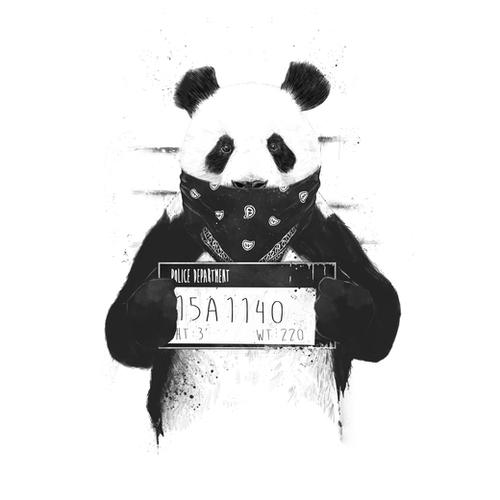 Bad panda Mural by Balazs Solti
