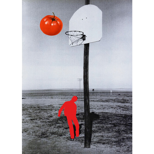 Tomato Mural by Lerson