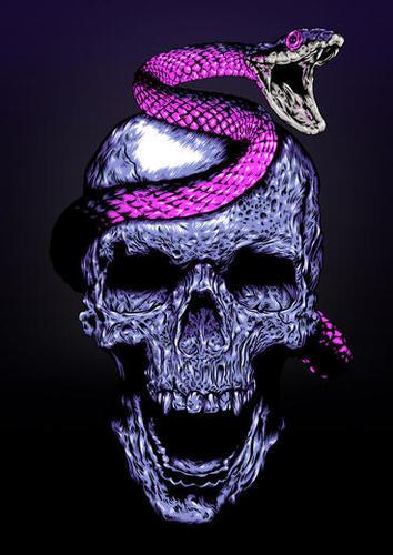 Skull and Snake Mural by Jordygraph
