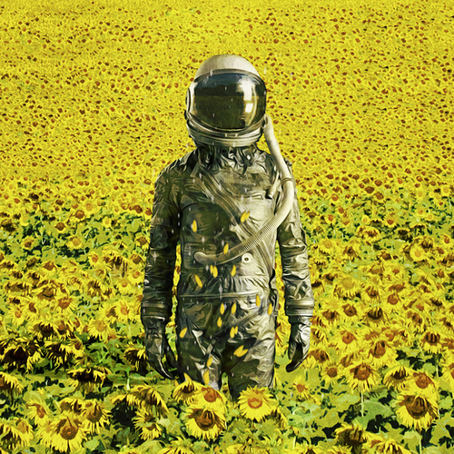 Stranded in the sunflower field Mural by Seamless